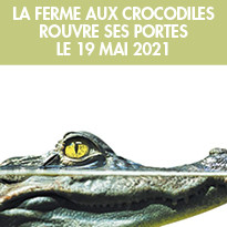 Réouverture  de la Ferme aux Crocodiles à Pierrelatte