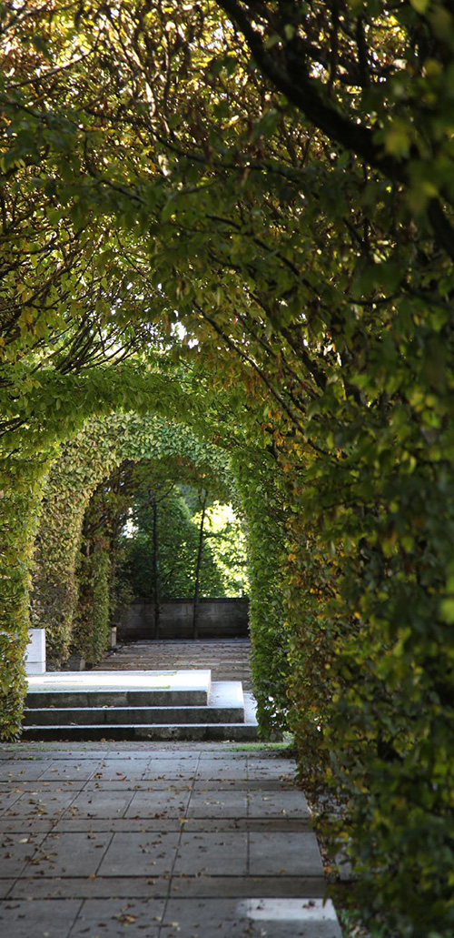 chateauroyalBlois20.jpg