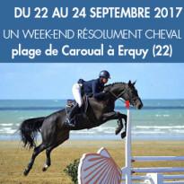 spectacle équestre...<br>Du 22 au 24 septembre<br>les Cavales d'Automne