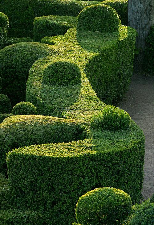Les jardins suspendus de marqueyssac un jardin romantique for Jardins romantiques francais