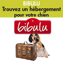 Bibulu<br>L'alternative<br>aux pensions canines