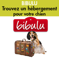 Bibulu<br>L'alternative<br>aux pensions canines