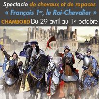 Château de Chambord (41)<br>spectacle de chevaux<br>et de rapaces