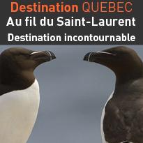 Destination<br>Québec<br>au fil<br>du St-Laurent