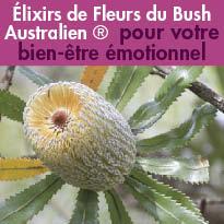 ELIXIRS<br>DE FLEURS DU BUSH<br>AUSTRALIEN