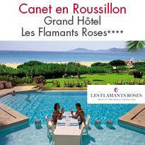 Les Flamants Roses<br>à Canet en Roussillon :<br>les ailes du plaisir...
