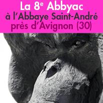 La 8e Abbyac<br>l'art contemporain<br>au jardin<br>près d'Avignon (30)