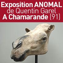 Exposition ANOMAL de Quentin Garel A Chamarande (91)