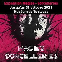 Exposition Magies - Sorcelleries au Muséum de Toulouse