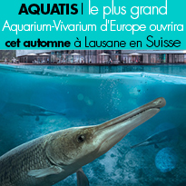 Lausane<br>le plus grand<br>Aquarium-Vivarium<br>ouverture<br>le 21 octobre 2017