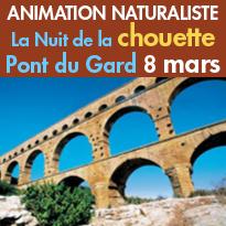 La Nuit de la chouette 2017<br>animation naturaliste<br>au Pont du Gard<br>8 mars