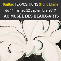 Expositions<br>de Xiong Liang<br>à Gaillac