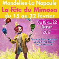 Du 15 au 22 02 2017<br>Fête du Mimosa<br>à Mandelieu<br>La Napoule (06)