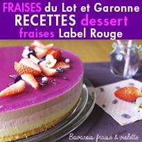 Desserts gourmands<br> Fraises Label Rouge<br>la Fraise du Lot et Garonne