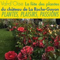 Val-d'Oise<br>La fête des plantes<br>du château<br>de La Roche-Guyon (95)