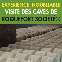 Site d'exception<br>Aveyron (12)<br>les caves de Roquefort<br>Société