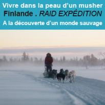 Conduire<br>son attelage<br>de chiens de traineau<br>en Finlande