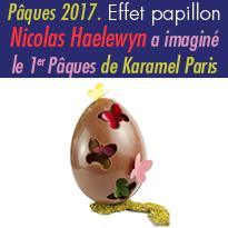 Effet papillon<br>hommage à la nature<br>Maison Karamel<br>Paris 75007