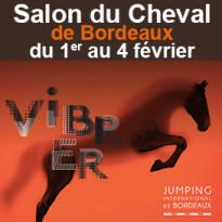 Salon du Cheval<br>de Bordeaux<br>du 1er au 4 février