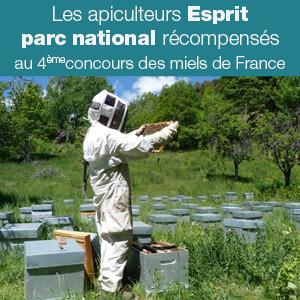 Les apiculteurs Esprit parc national récompensés !