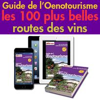 Guide de l'Oenotourisme<br>les 100 plus belles routes<br>des vins en France<br>Petit Futé
