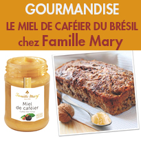 Miel de caféier<br>du Sud-Est<br>du Brésil<br>Famille Mary