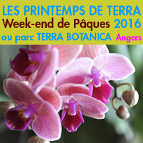 LES PRINTEMPS DE TERRA<br>Week-end de Pâques<br>à Angers (49)