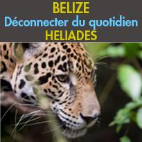 Des paysages<br>et une biodiversité uniques<br>le Belize<br>Un petit paradis