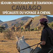 Des séjours équestres<br>pour les photographes en herbe