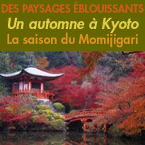 Japon<br>Un automne à Kyoto<br>La saison du Momijigari.<br>Des paysages Eblouissants
