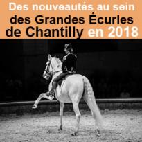 Des nouveautés<br>aux Grandes Écuries<br>de Chantilly<br>en 2018