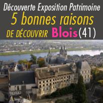 Destination<br>La Loire<br>5 bonnes raisons<br>de découvrir Blois (41)