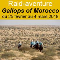 Gallops of Morocco<br>un raid-aventure<br>qui ne ressemble<br>à aucun autre