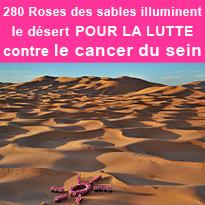 280 Roses<br>des sables<br>pour la lutte<br>contre le cancer<br>du sein