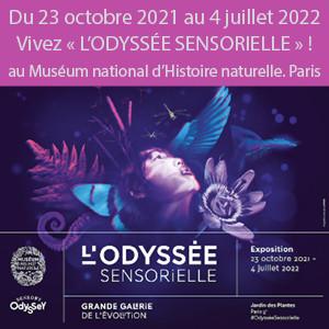 Exposition « L'Odyssée sensorielle »au Muséum national d'Histoire naturelle