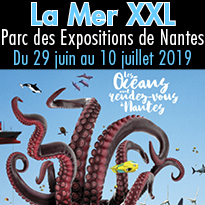 Exposition<br>Nantes<br>La Mer XXL<br>Du 29 juin<br>au 10 juillet 2019