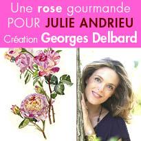 Une rose gourmande<br>pour Julie Andrieu<br>Création<br>Georges Delbard