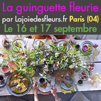 Le 16 et 17 septembre<br>Une guinguette éphémère<br>sur les quais de Seine<br>Paris 04