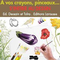 Apprendre à dessiner<br>avec les éditions<br>Dessain et Tolra