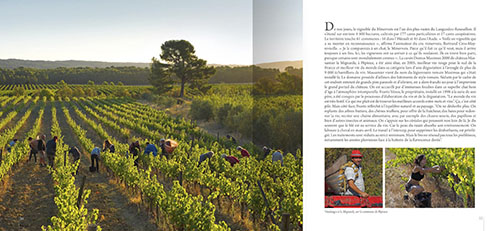 8_pages_Minervois_Page_2_Image_0002.jpg