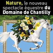 Nature,<br>le nouveau<br>spectacle<br>équestre<br>du Domaine de Chantilly