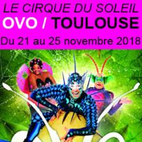Le cirque du soleil<br>OVO<br>un spectacle captivant