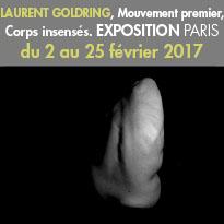 Exposition<br>de Laurent Goldring<br>Mouvement premier,<br>Corps insensés<br>Février 2017