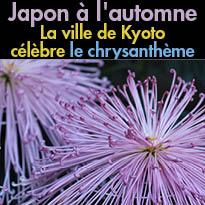 Japon<br>La ville de Kyoto<br>célèbre le chrysanthème
