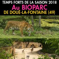 Bioparc<br>de Doué-la-Fontaine<br>les Temps Forts 2018
