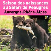 2018<br>Nouvelles<br>naissances<br>au Safari<br>de Peaugres